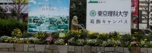 金町駅北口花壇