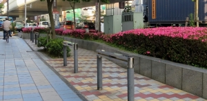 水戸街道のサツキ