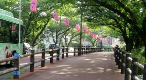水元公園 その1