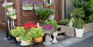 東水元一丁目の花壇