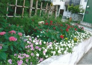半田小学校花壇