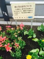 花風船の会  花の植え付け