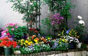 金町末広商店街の花壇