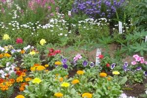 花と緑を育てよう!