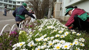 花壇整備の日