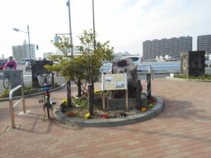 中川橋橋詰のタブの木