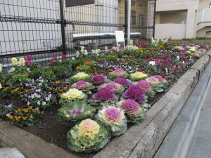 フローラル高砂花壇