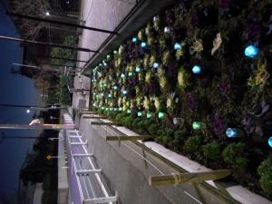 2020東京オリンピツク応援緑と花いつぱい