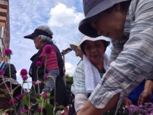 南口花壇の植え付け