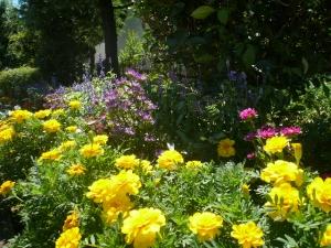 花いっぱいです♪