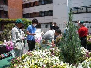 区役所花と緑のいこいガーデンで学ぶ