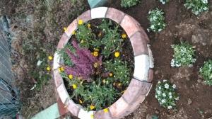 新しい花壇が出来ました♪