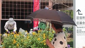 花壇ギャラリー