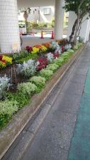 通りに面した花壇です!!