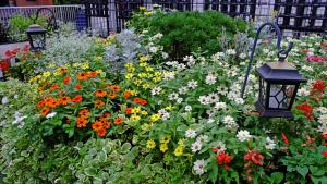 花と緑がある区役所へ行こう