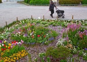 春の花壇。