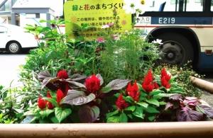 新小岩駅南口の花壇 その1